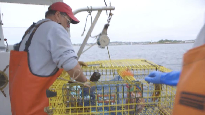 How Do Modern Day Gloucester Lobstermen Really Feel? – Crossing the Bar Again