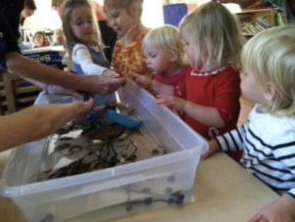 So Much Fun at Blue River Montessori