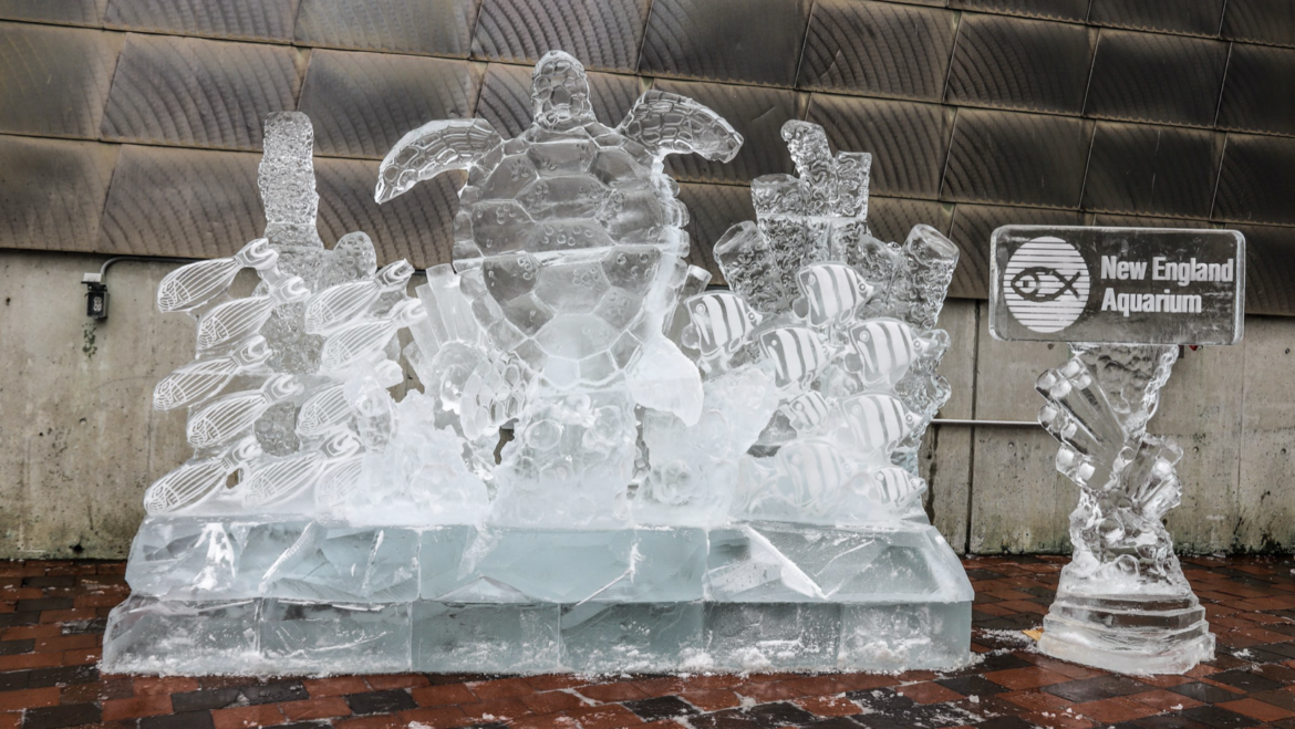 New England Aquarium Ice Sculpture for Boston's First Night